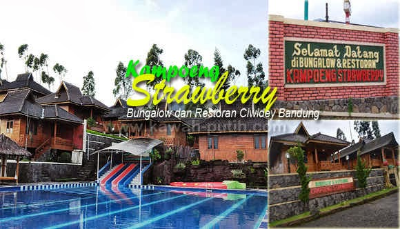 Kampoeng Strawberry Ciwidey