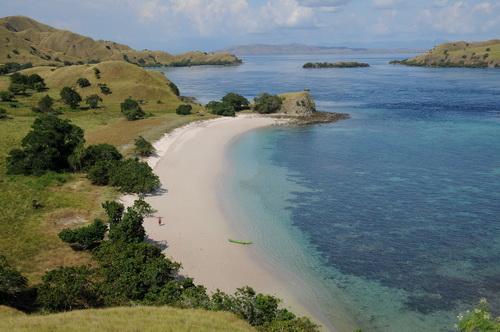 Pink-Beach-di-Pulau-Komodo
