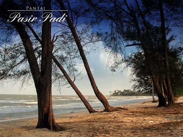 pantai_pasir_padi1