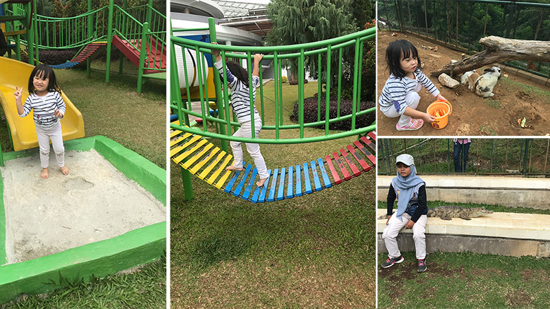 playground-peeting-garden