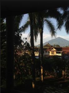 view-from-room-tirtangga-hotel