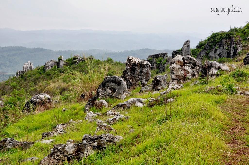 garden stone 1