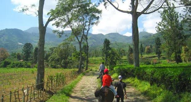 Agro-Gunung-Mas-Bogor