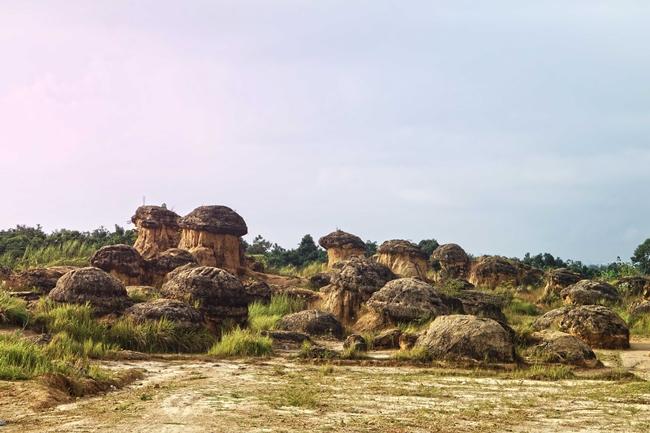 bukit-jamur-gresik-warung-apung-rahmawati-1