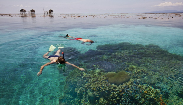 5_spot_snorkeling_sulawesi_pic_2