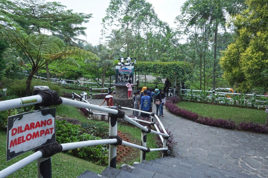 cimory-on-the-valley-semarang-12