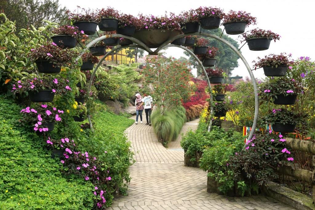 rainbow-garden-5