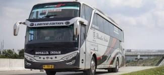 bus-rosalia